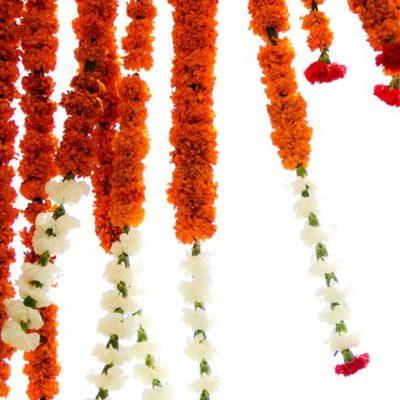 viaggi in india - i fiori