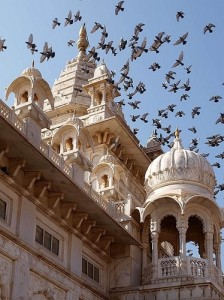 Viaggio in Rajasthan